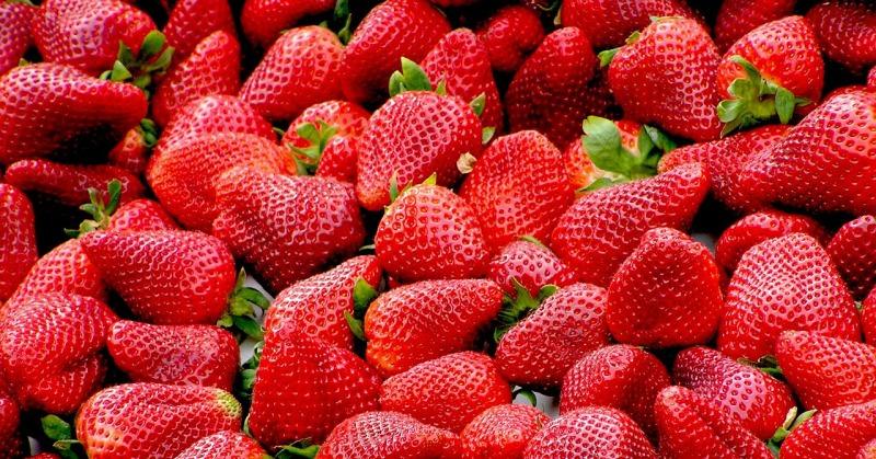 strawberries-99551_1280